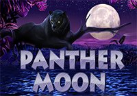 Panther Moon