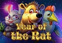 Year Of The Rat